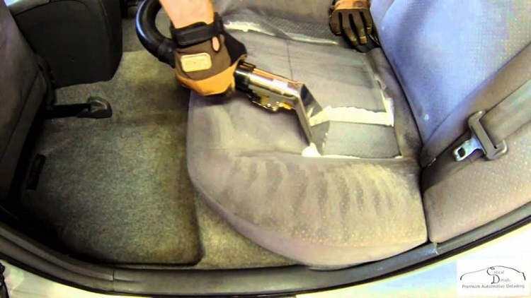 how to get rid of ants in car naturally