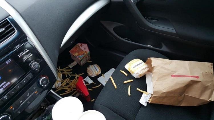 ants in car dashboard